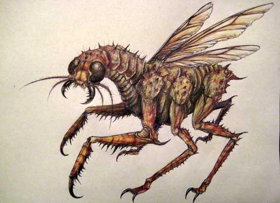 Megopteran
