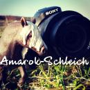 Photo de Amarok-Schleich