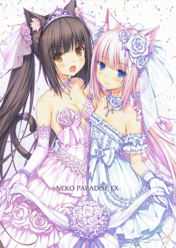 Image / Manga fille neko