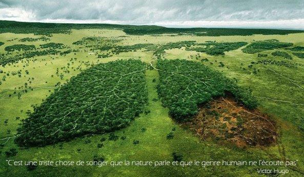 Que faisons nous a la planete...