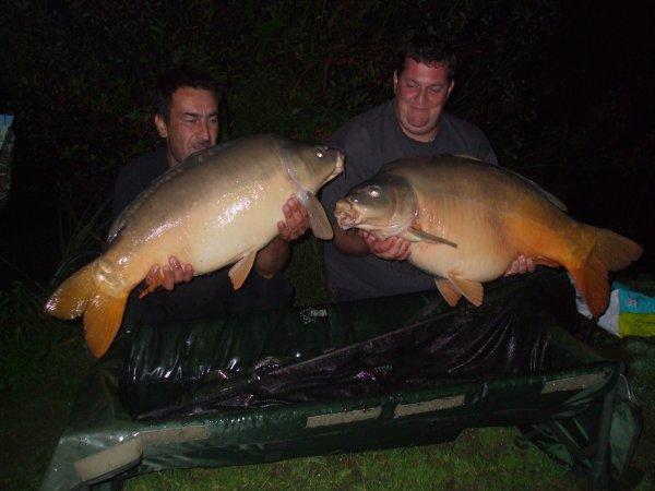 double a pescalis