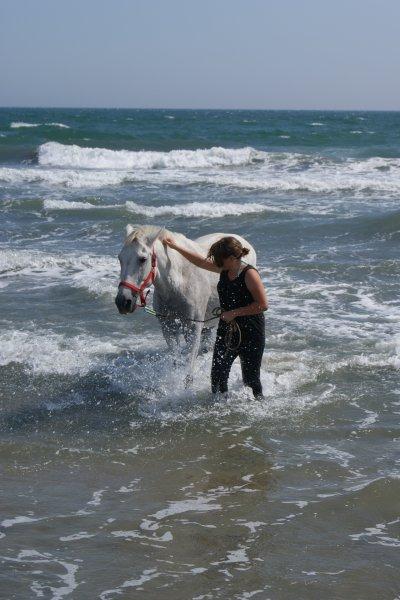 L'équitation est la plus noble expression d'une union charnelle