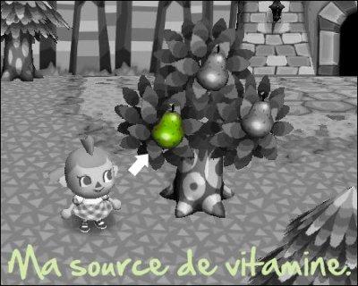 « Mon fruit ♥! »