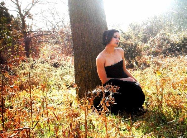 Petite Balade en Forêt