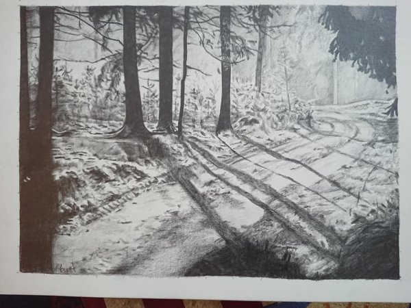 . . . La Forêt . . .