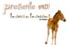 .  Présente MOii Ton ch'val Ou ton Chouchou en 5 Com's et Gagne ton lien + 10 Shiiffres !