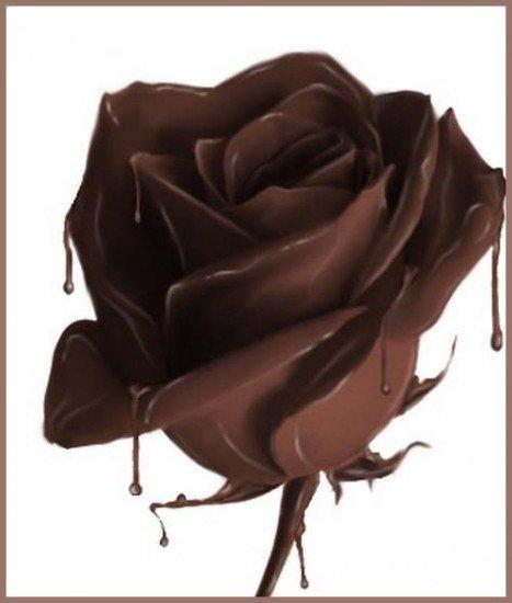 Un amour de chocolat hum !!