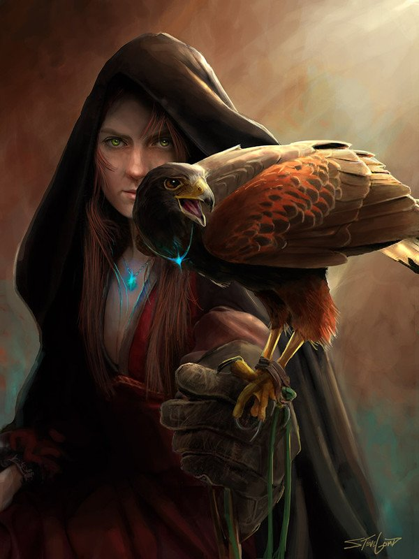 Ma fauconnière
