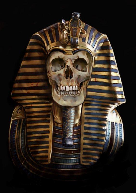 Egypte skull