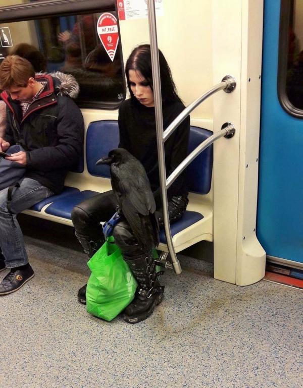 eh wi dans le métro d'où je ne sais où, un goth