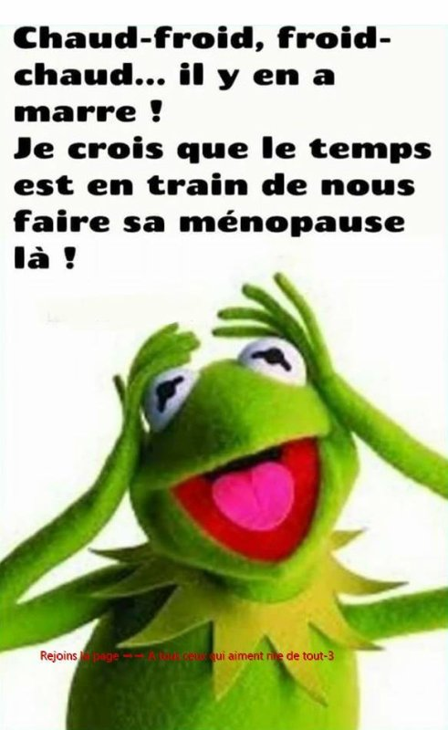 Chaud ! froid ! ouille ! aille ! aïe ! euh chui barge mdr