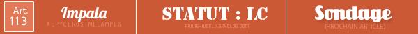 _______» ARTICLE N°113 :L'IMPALA_______ » Posté le 08 Juillet 2012 » Faune-world.skyblog.com