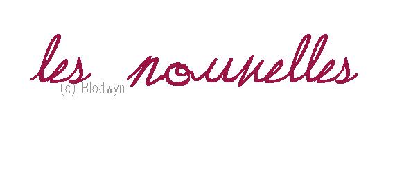 _ Les_Nouvelles _Du_Blog_
