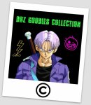 Photo de dbz-goodies-collection