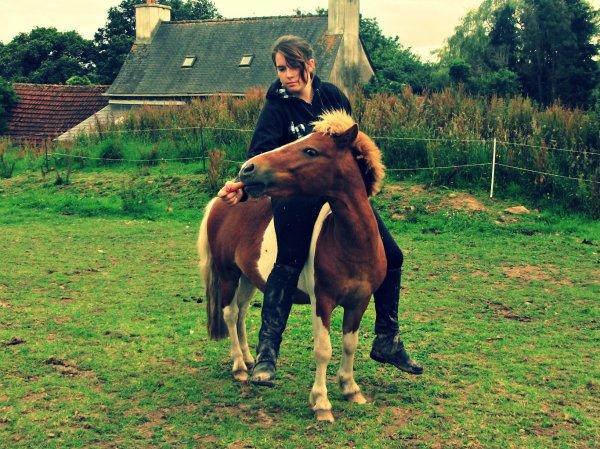 """"""" Le cheval ne nous apartient pas, c'est un esprit libre nous fesons que l'emprunter """""""