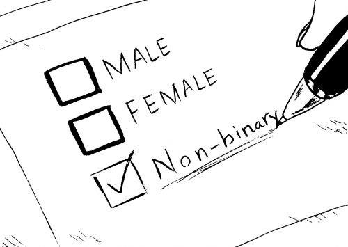 qu'est-ce que le syndrome de benjamin ou la transsexualités ?