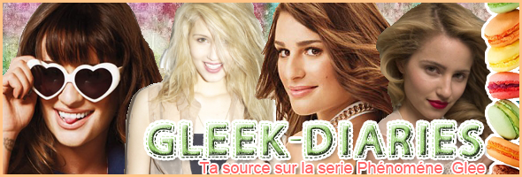 ~Gleek-Diaries~