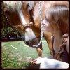 blog-equestre