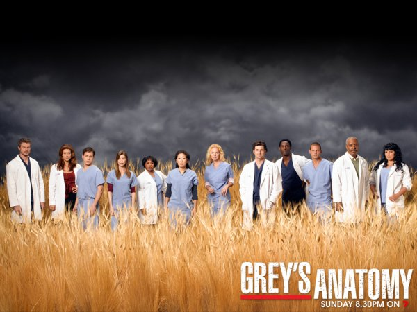 Grey'S Anatomy  (l)