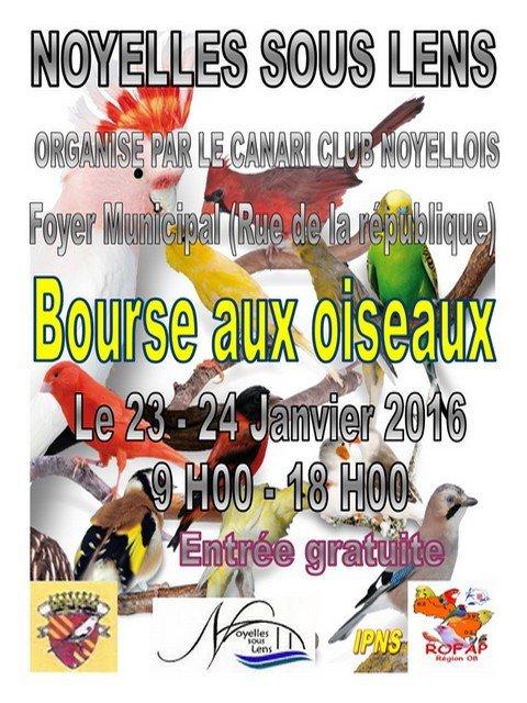 bourse Canari Club Noyellois
