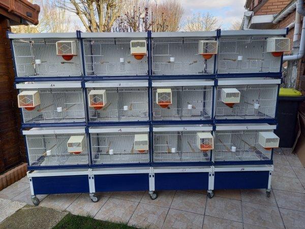 batterie  élevage  21 cages    VENDU