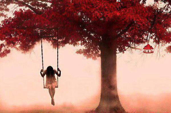 La vie n'est qu'une étreinte solitude...
