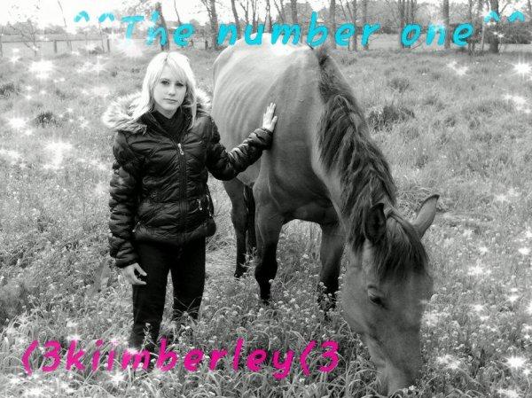 Le meilleur des chevaux n'est pas celui qui t'as mené ou tu voulais alor que tu étais en selle, mais celui qui a fais voyager ton coeur alor que tu l'écouté respiré
