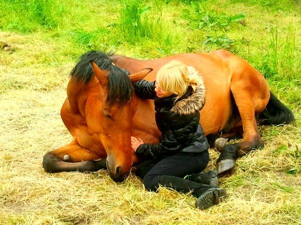 « L'extérieur du cheval exerce une influence bénéfique sur l'intérieur de l'homme.
