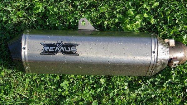 Remus merdo..