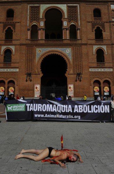 La derniere campagne anti-corrida de anima naturalis...