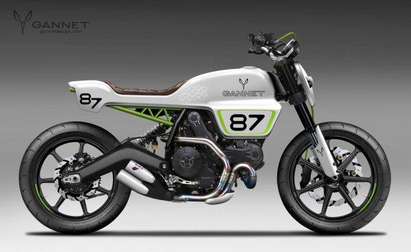 More Ducati scrambler..