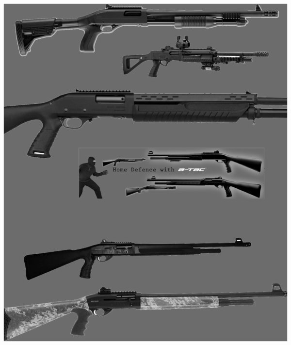 Tactical 12 Gauge