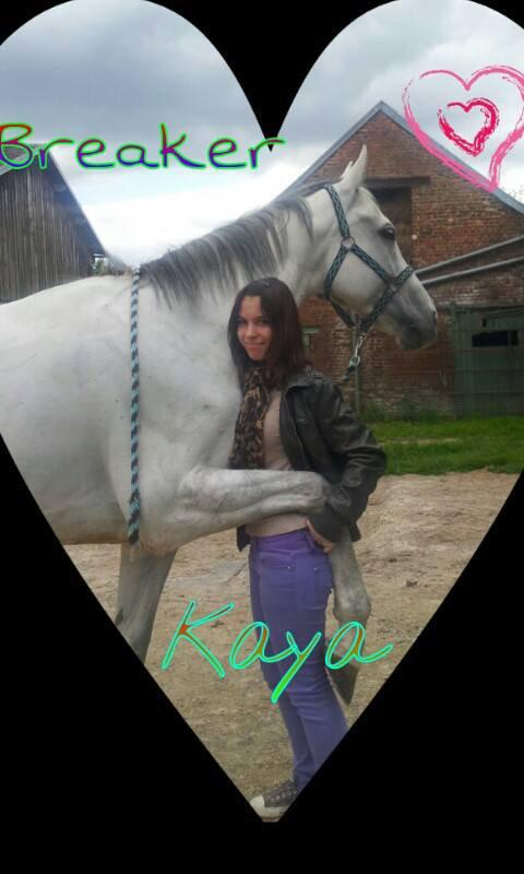 Ma petite histoire ( recherche bracelet en crins de cheval me mp)