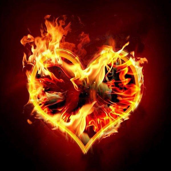 « la foudre et l'amour laissent les vêtements intacts et le c½ur en cendres. »