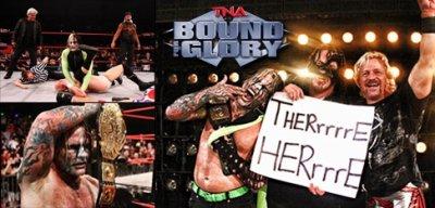 Jeff Hardy TNA Champion