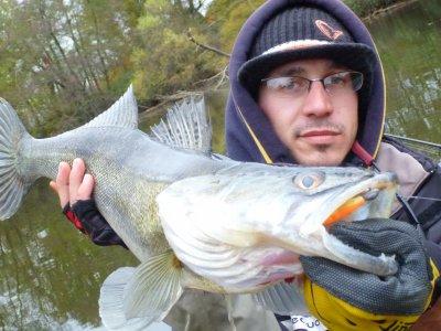 poissons de fin 2011
