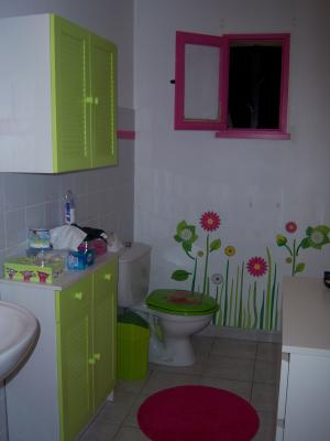 Beautiful Salle De Bain Rose Et Vert Photos - Awesome Interior Home ...