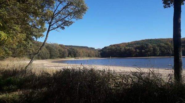Plus de lagon mais des sapins , lacs à 20 km un à 5km, la campagne à 70 kms de dijon .
