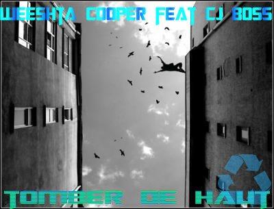 weeshta cooper- tomber de haut (remix) (2012)