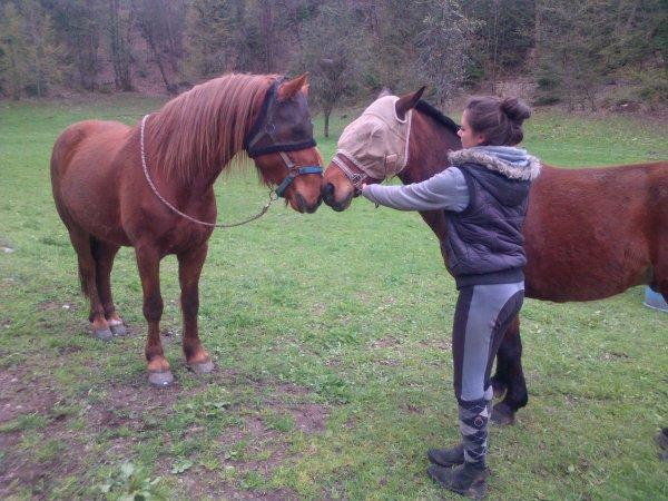 Après un hiver très long , place aux beaux jours pour les poneys !
