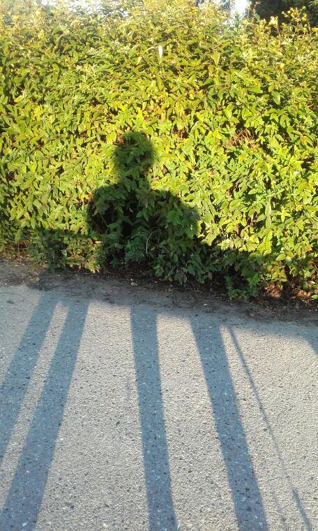 L'ombre...