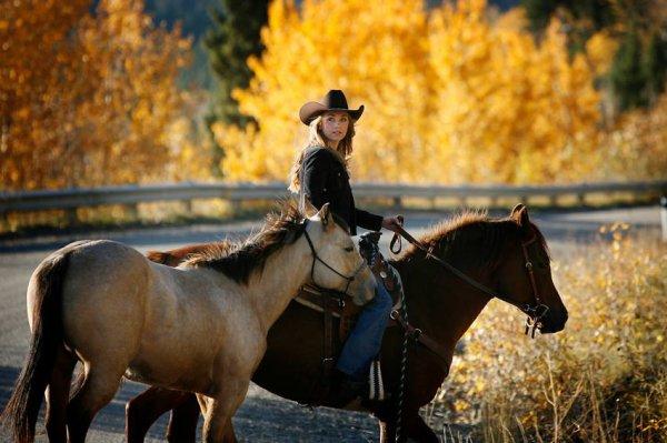 Amber et ses chevaux ( et Remy )