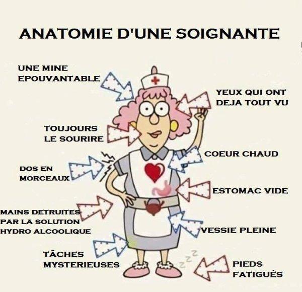 anatomie d'une soignante