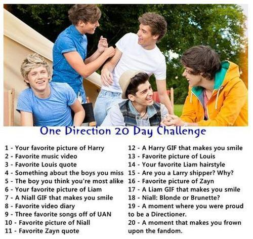 One Direction 20 Day Challenge