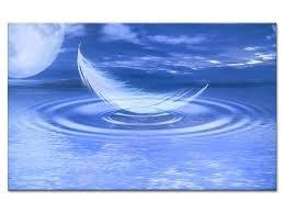 La plume est la langue de l'âme...!!! légère apprécie la brise fraiche d'aire ensoleillé  pour exposer la valeur de sa beauté