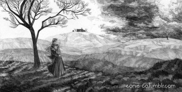 Les Hauts de Hurlevent / Wuthering Heights (livre)