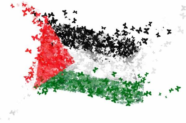→ Plastine ! パレスチナ