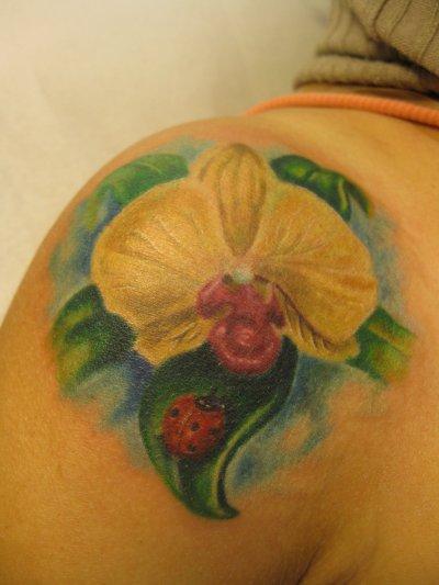 Orchidée et cox