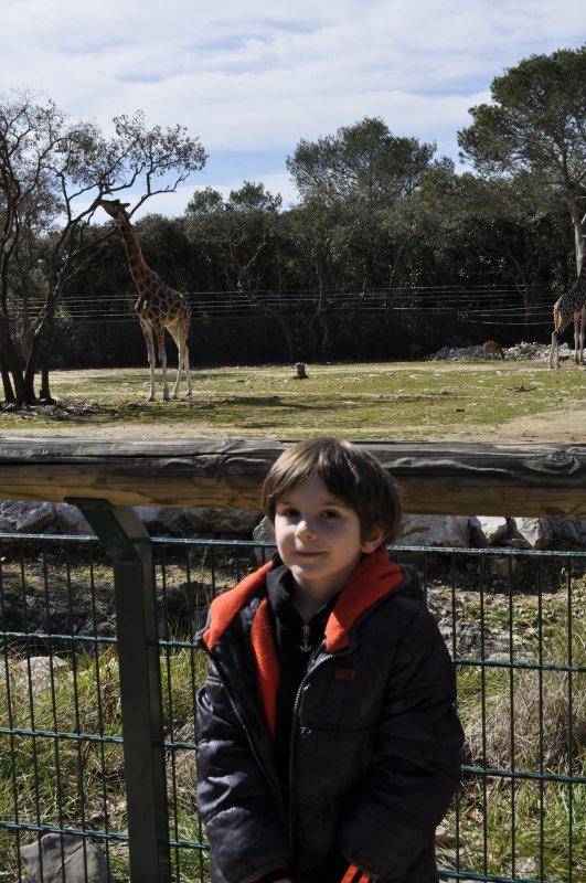 Fevrier 2015 - Mtp- zoo du lunaret