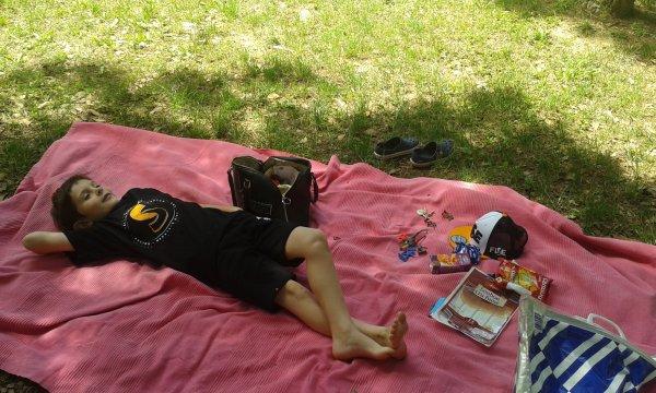 Juin/Juillet 2015 piq-niq bords du Lez